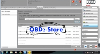 Audi VW Geko Certificate Installation Services For ODIS Certificate 2054 With ODIS License Patch File